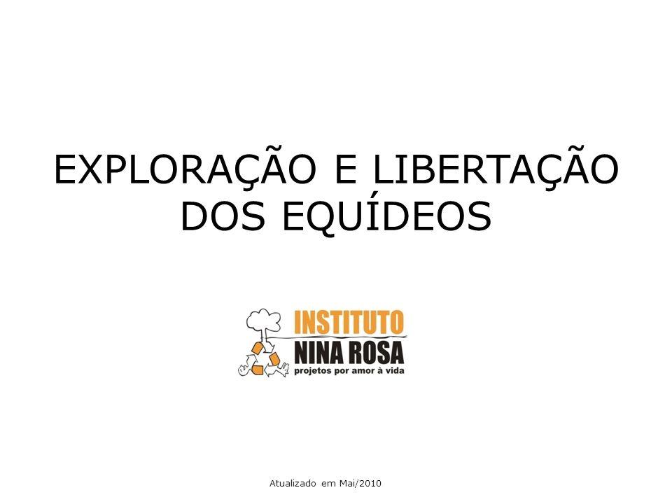 EXPLORAÇÃO E LIBERTAÇÃO DOS EQUÍDEOS Atualizado em Mai/2010