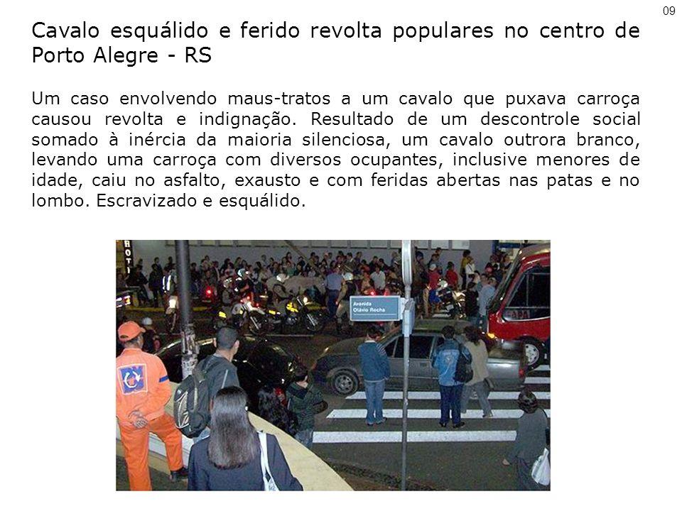09 Cavalo esquálido e ferido revolta populares no centro de Porto Alegre - RS Um caso envolvendo maus-tratos a um cavalo que puxava carroça causou revolta e indignação.
