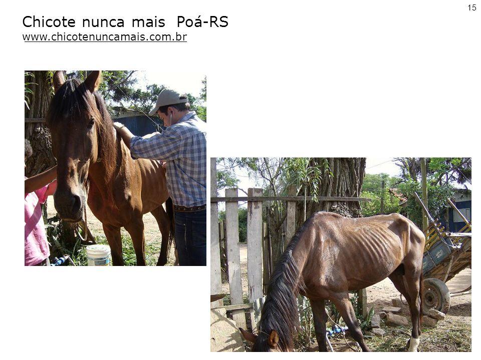 Chicote nunca mais Poá-RS www.chicotenuncamais.com.br 15