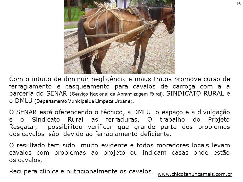 Com o intuito de diminuir negligência e maus-tratos promove curso de ferragiamento e casqueamento para cavalos de carroça com a a parceria do SENAR ( Serviço Nacional de Aprendizagem Rural), SINDICATO RURAL e o DMLU ( Departamento Municipal de Limpeza Urbana).