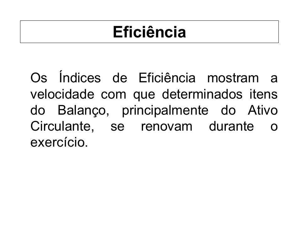 Os Índices de Eficiência mostram a velocidade com que determinados itens do Balanço, principalmente do Ativo Circulante, se renovam durante o exercício.