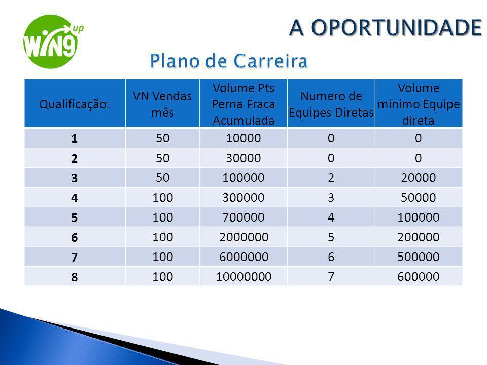 Qualificação: VN Vendas mês Volume Pts Perna Fraca Acumulada Numero de Equipes Diretas Volume mínimo Equipe direta 1501000000 2503000000 3501000002200
