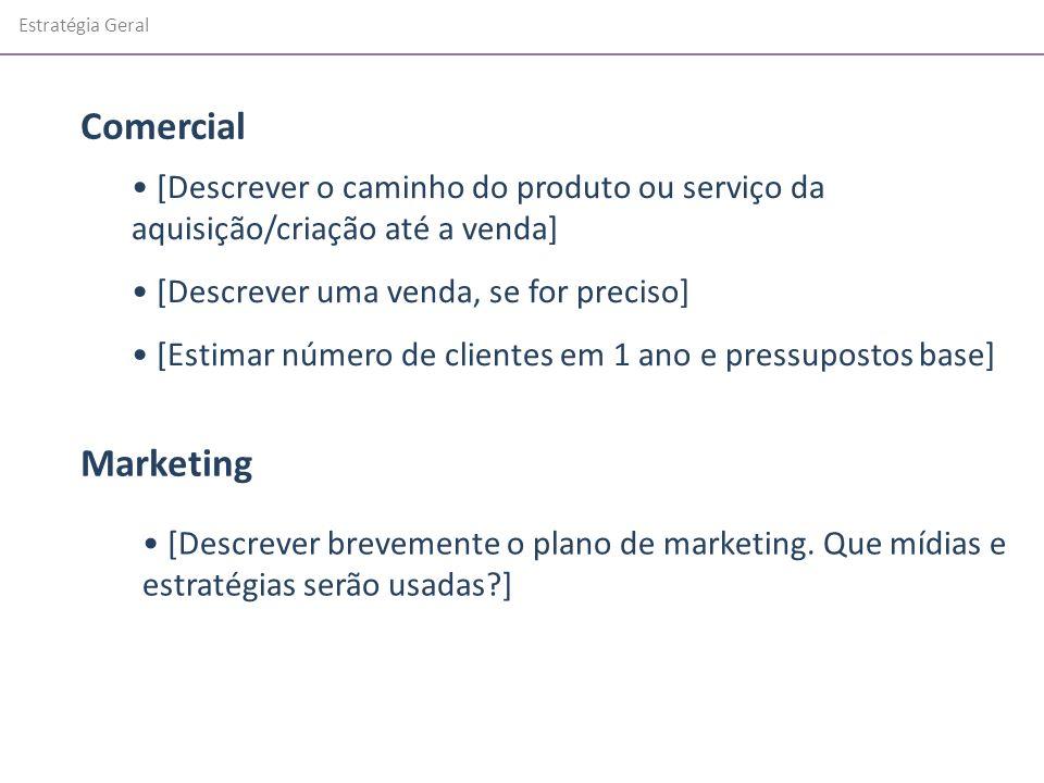 Estratégia Geral [Descrever o caminho do produto ou serviço da aquisição/criação até a venda] [Descrever uma venda, se for preciso] [Estimar número de