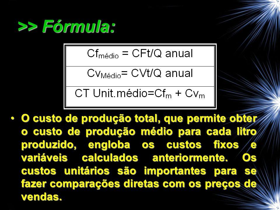 >> Fórmula: O custo de produção total, que permite obter o custo de produção médio para cada litro produzido, engloba os custos fixos e variáveis calculados anteriormente.