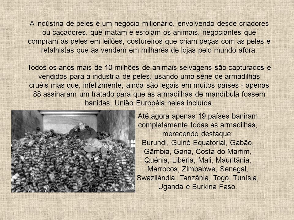 Comércio de Peles Rildo Silveira Created by rildosilveira@yahoo.com.br Cruzília – MG – Brasil Gavin Rossdale ator e ex-integrante da banda inglesa