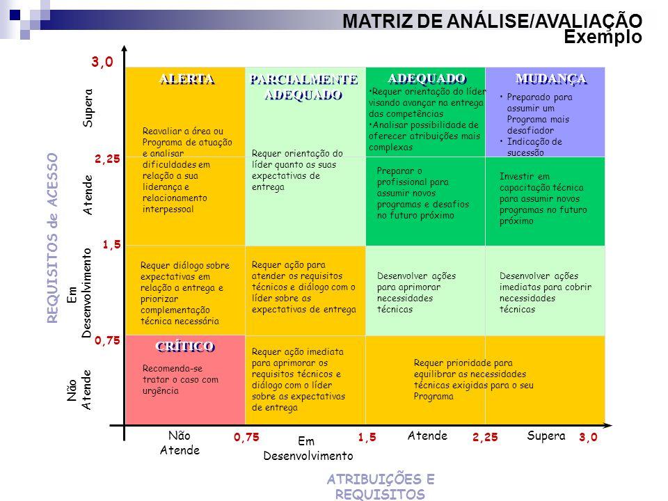 MATRIZ DE ANÁLISE/AVALIAÇÃO Exemplo ATRIBUIÇÕES E REQUISITOS 3,0 REQUISITOS de ACESSO Supera Atende Não Atende Não Atende Supera Em Desenvolvimento Em