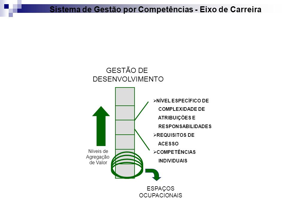 Sistema de Gestão por Competências - Eixo de Carreira GESTÃO DE DESENVOLVIMENTO Níveis de Agregação de Valor NÍVEL ESPECÍFICO DE COMPLEXIDADE DE ATRIB