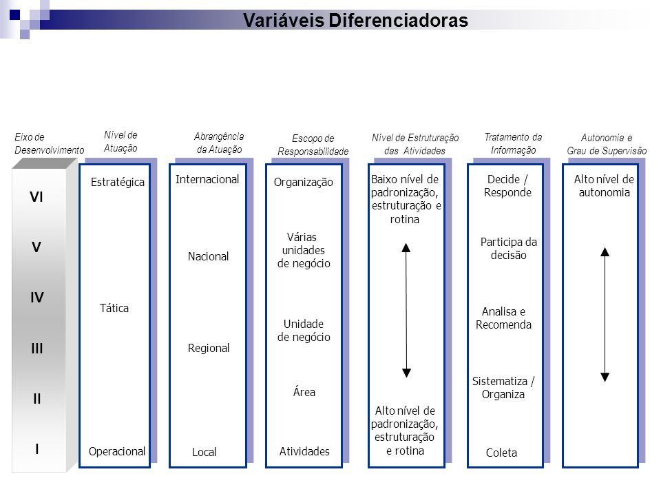 I II III IV V VI VII VIII IX Níveis de Complexidade Estratégico Tático Operacional Nível de Atuação Tático-Estratégico Tático-Operacional Decide / Responde Influencia a decisão Analisa e Recomenda Sistematiza / Organiza Coleta Tomada de Decisão Participa da decisão Atividades com alto grau de abstração Atividades Estruturadas e rotineiras Nível de Estruturação das Atividades Atividades Semi-estruturadas apoiadas em procedimentos Atividades abstratas Semi-estruturadas Atividades pouco-estruturadas (maior abstração e interpretação) Escopo de Responsabilidade Instituição Processos/ Áreas Processos/ Projetos Sub-Processos Conj.