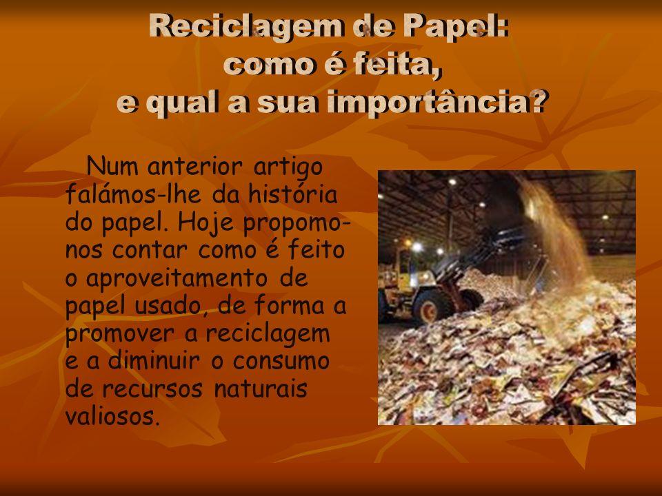 Num anterior artigo falámos-lhe da história do papel. Hoje propomo- nos contar como é feito o aproveitamento de papel usado, de forma a promover a rec