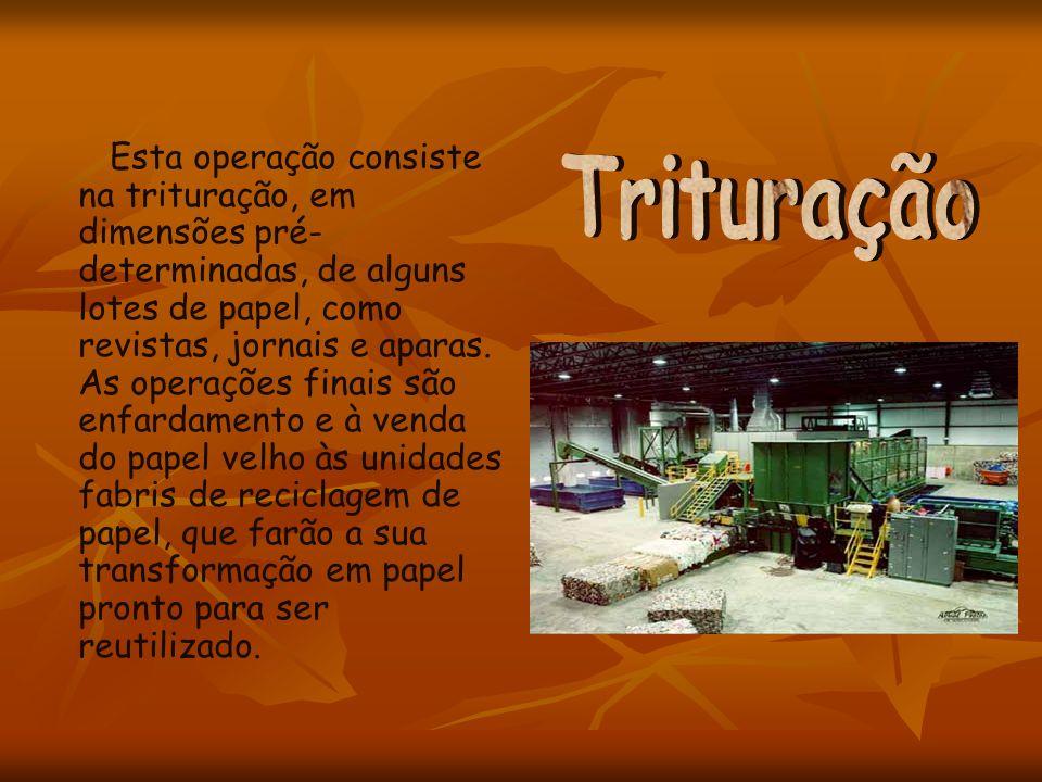 Esta operação consiste na trituração, em dimensões pré- determinadas, de alguns lotes de papel, como revistas, jornais e aparas. As operações finais s