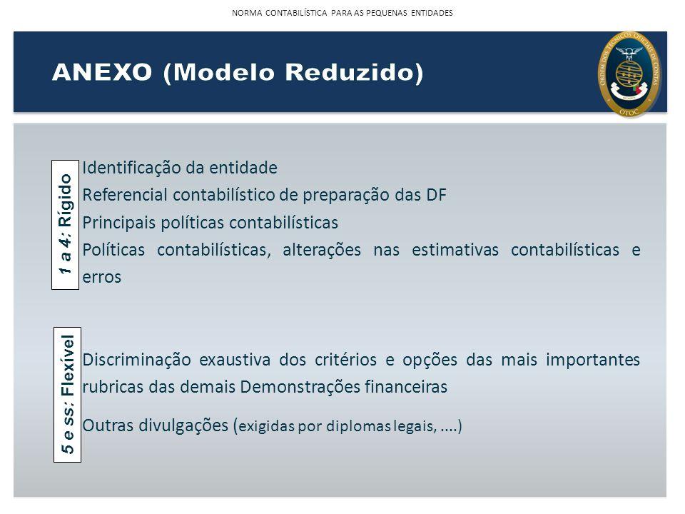 Identificação da entidade Referencial contabilístico de preparação das DF Principais políticas contabilísticas Políticas contabilísticas, alterações n