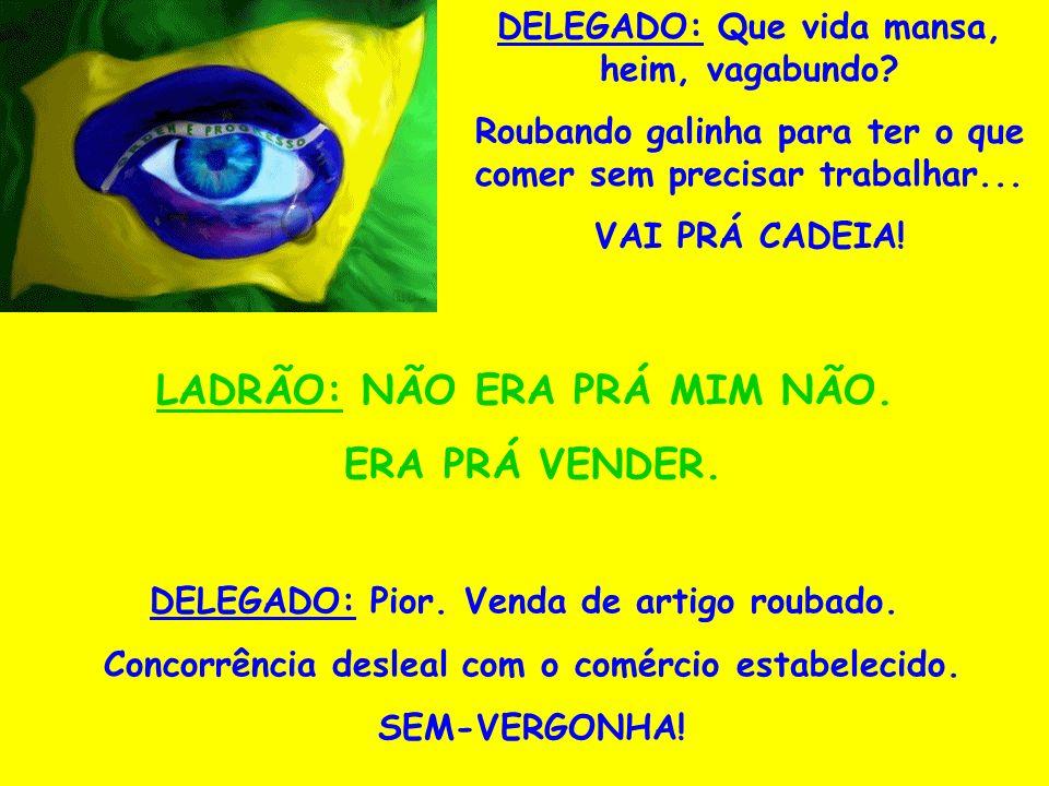 O BRASIL EXPLICADO EM GALINHAS: Pegaram um cara em flagrante, roubando galinhas de um galinheiro e o levaram para a delegacia.
