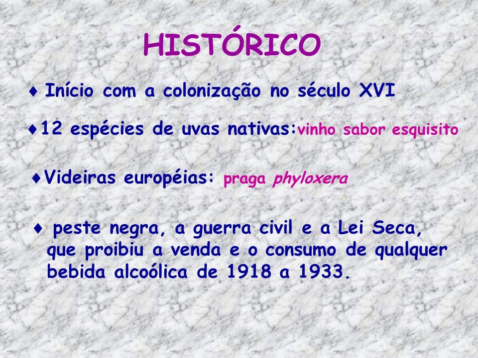 E assim, os Estados Unidos descobriram o vinho caseiro, e sua produção ilegal espalhou-se por diversas regiões no país.
