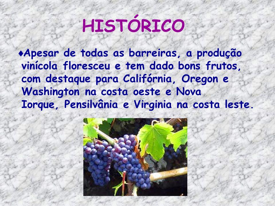 NEW YORK Nova York vem em terceiro lugar na produção de vinho nos EUA, atrás da Califórnia e Washington.