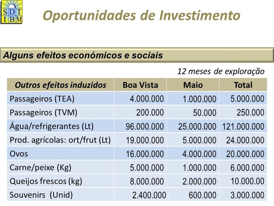 Oportunidades de Investimento Alguns efeitos económicos e sociais Outros efeitos induzidosBoa VistaMaioTotal Passageiros (TEA) 4.000.0001.000.0005.000.000 Passageiros (TVM) 200.00050.000250.000 Água/refrigerantes (Lt) 96.000.00025.000.000121.000.000 Prod.