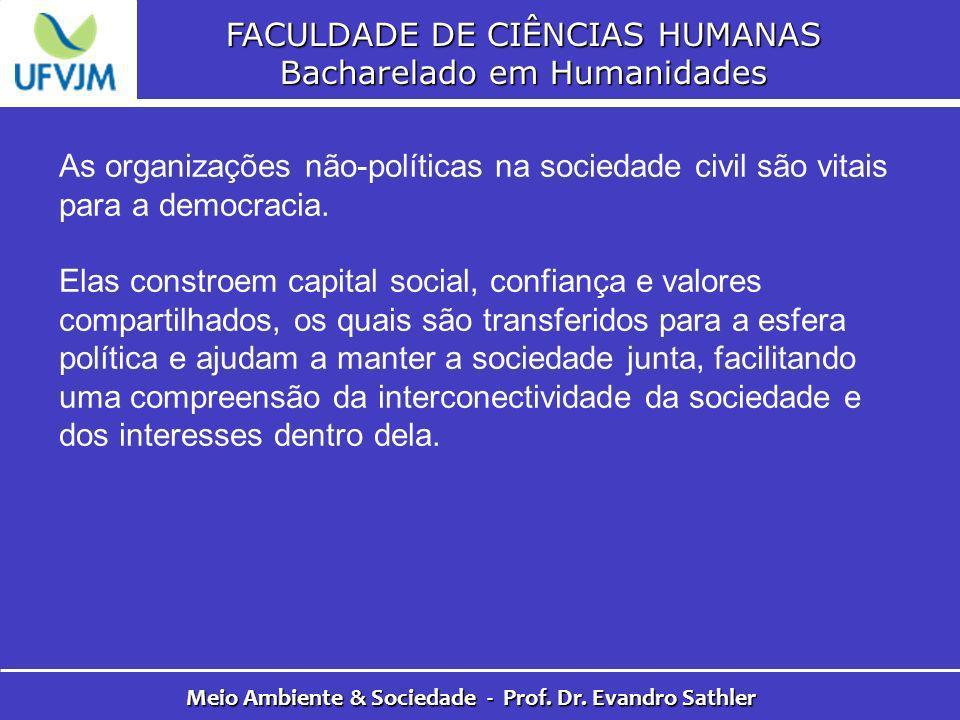 FACULDADE DE CIÊNCIAS HUMANAS Bacharelado em Humanidades Meio Ambiente & Sociedade - Prof. Dr. Evandro Sathler As organizações não-políticas na socied