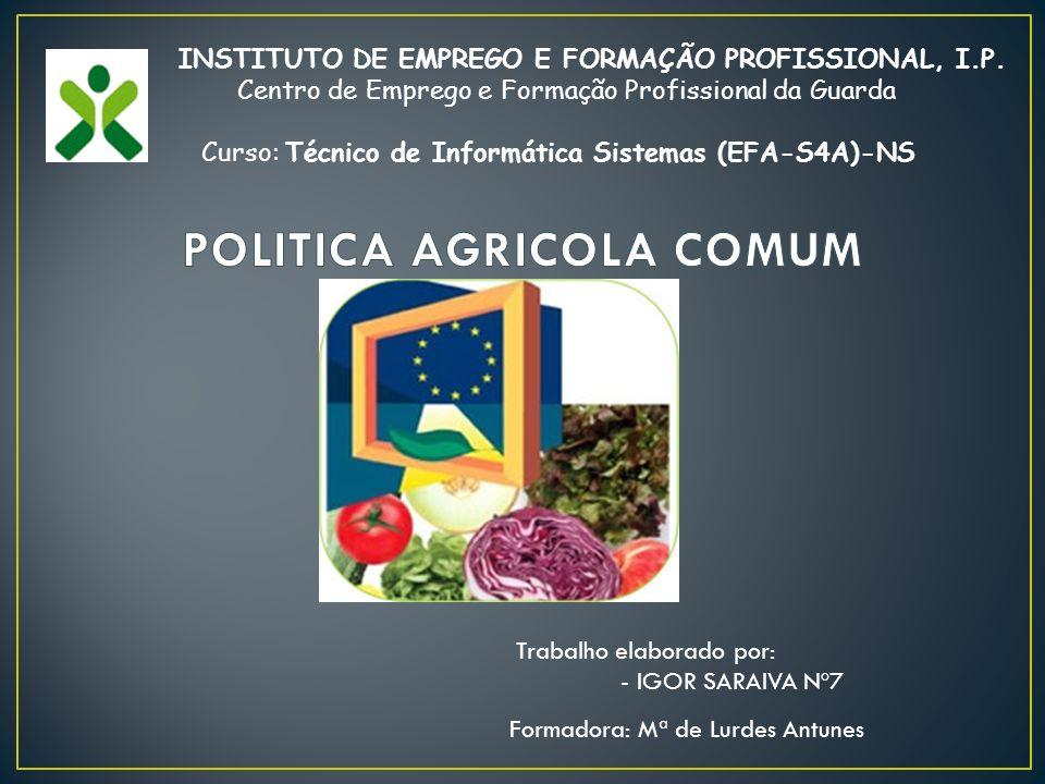 Formadora: Mª de Lurdes Antunes INSTITUTO DE EMPREGO E FORMAÇÃO PROFISSIONAL, I.P.