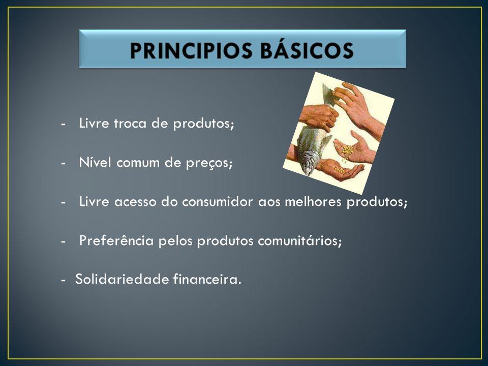 -Livre troca de produtos; -Nível comum de preços; -Livre acesso do consumidor aos melhores produtos; -Preferência pelos produtos comunitários; - Solidariedade financeira.