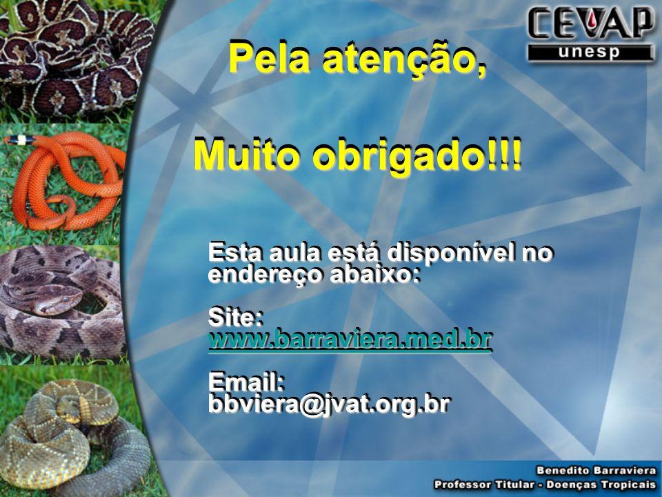 Pela atenção, Muito obrigado!!! Pela atenção, Muito obrigado!!! Esta aula está disponível no endereço abaixo: Site: www.barraviera.med.br Email:bbvier