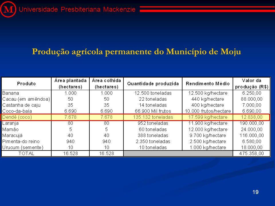 19 M Universidade Presbiteriana Mackenzie Produção agrícola permanente do Município de Moju