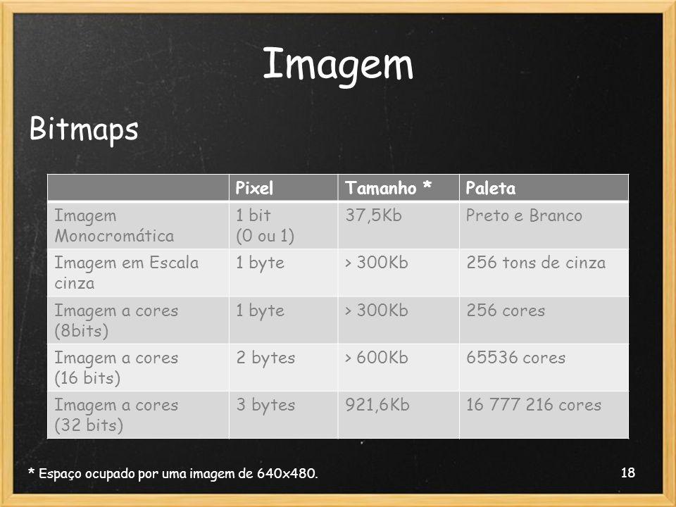 18 Imagem Bitmaps * Espaço ocupado por uma imagem de 640x480. PixelTamanho *Paleta Imagem Monocromática 1 bit (0 ou 1) 37,5KbPreto e Branco Imagem em