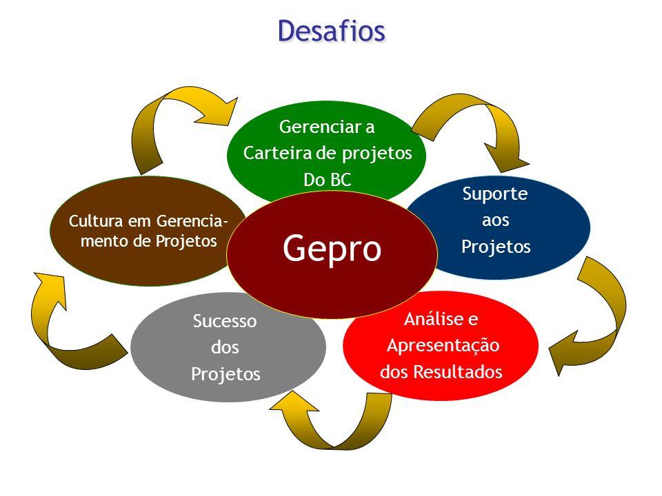 Cultura em Gerencia- mento de Projetos Análise e Apresentação dos Resultados Sucesso dos Projetos Suporte aos Projetos Gerenciar a Carteira de projeto