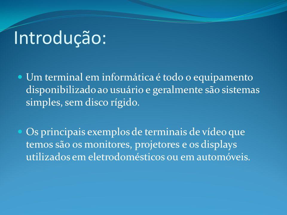 Introdução: Um terminal em informática é todo o equipamento disponibilizado ao usuário e geralmente são sistemas simples, sem disco rígido. Os princip