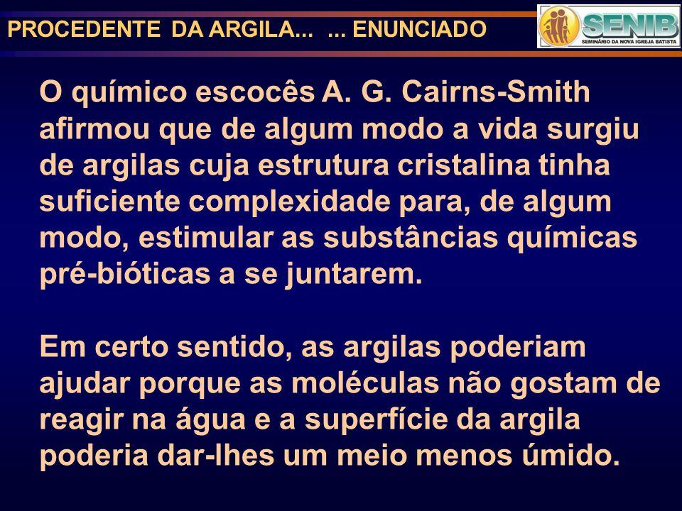 PROCEDENTE DA ARGILA...... ENUNCIADO O químico escocês A. G. Cairns-Smith afirmou que de algum modo a vida surgiu de argilas cuja estrutura cristalina