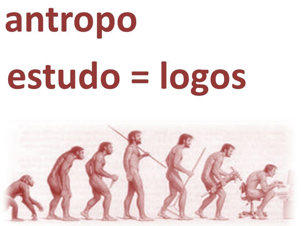 antropo|logia estudo = logos