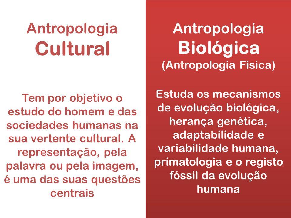 Antropologia Biológica (Antropologia Física) Estuda os mecanismos de evolução biológica, herança genética, adaptabilidade e variabilidade humana, prim
