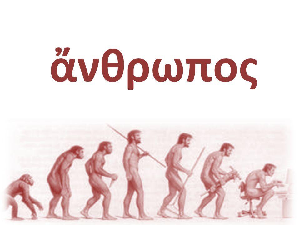 nosotros [Nós] Nossa civilização Será que o Ocidente é mais evoluído.