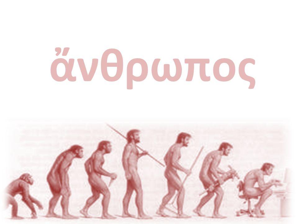 Horizonte da Antropologia Não há nenhum tipo de organização social que caía fora do alcance do antropólogo.