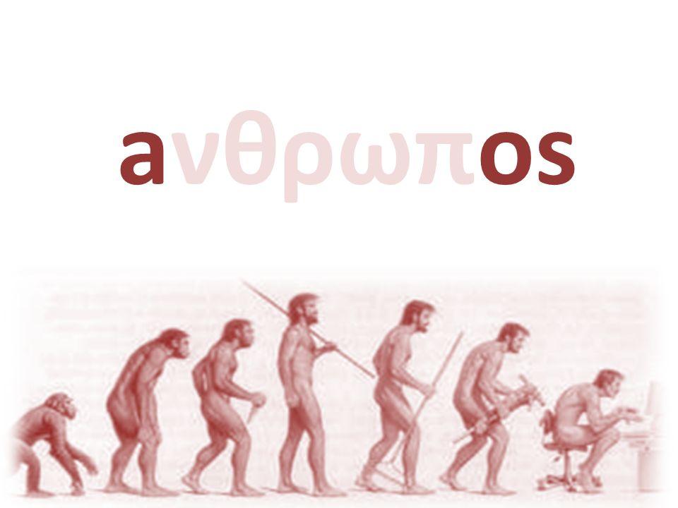 aνθρωπos