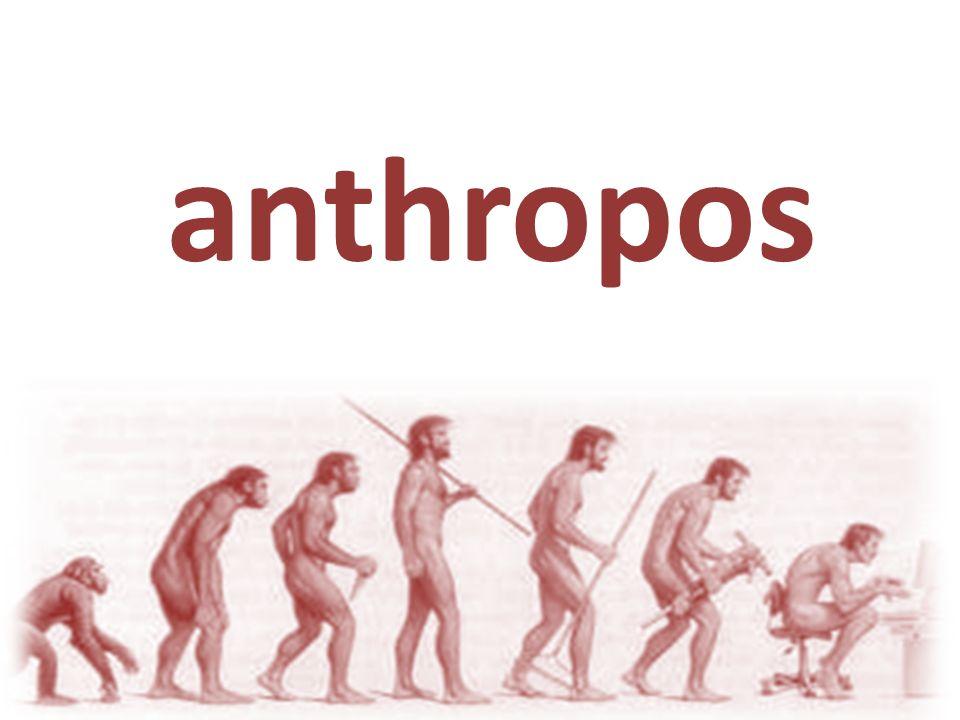 Filipe Reis Estamos a passar por uma mutação... a humanidade se encontra em uma encruzilhada