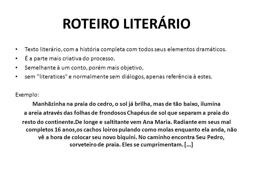 ROTEIRO LITERÁRIO Texto literário, com a história completa com todos seus elementos dramáticos. É a parte mais criativa do processo. Semelhante à um c