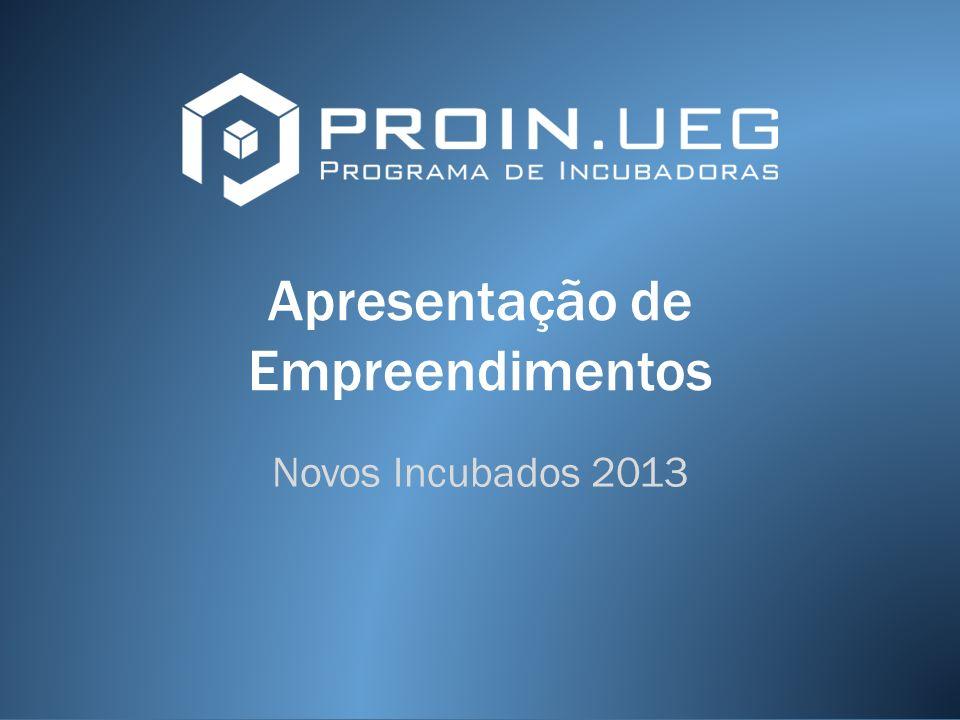 Apresentação de Empreendimentos Novos Incubados 2013