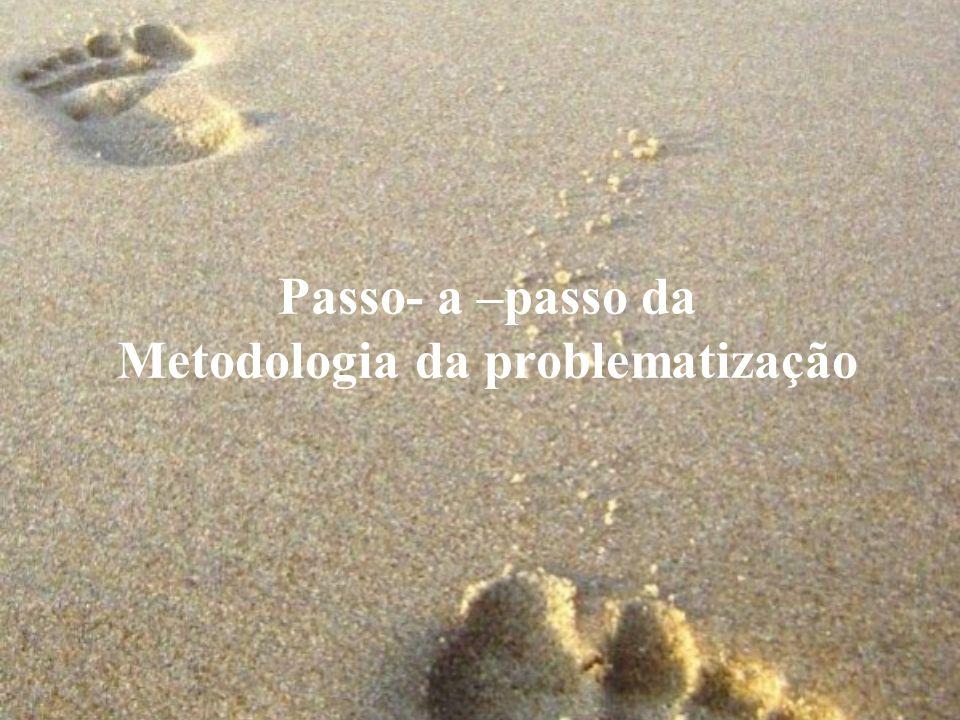 Passo- a –passo da Metodologia da problematização