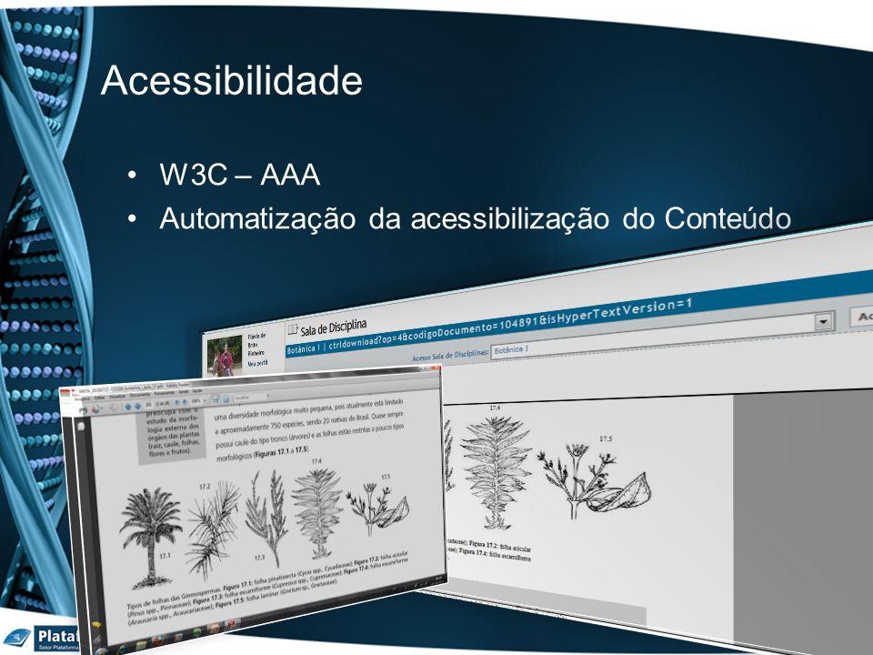 W3C – AAA Automatização da acessibilização do Conteúdo Acessibilidade