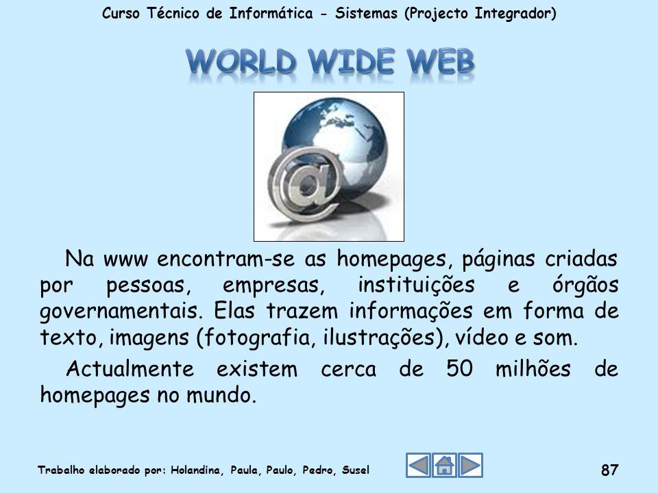 Na www encontram-se as homepages, páginas criadas por pessoas, empresas, instituições e órgãos governamentais. Elas trazem informações em forma de tex