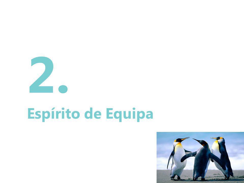 15 2. Espírito de Equipa