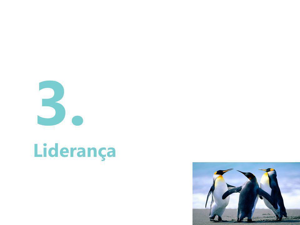35 3. Liderança