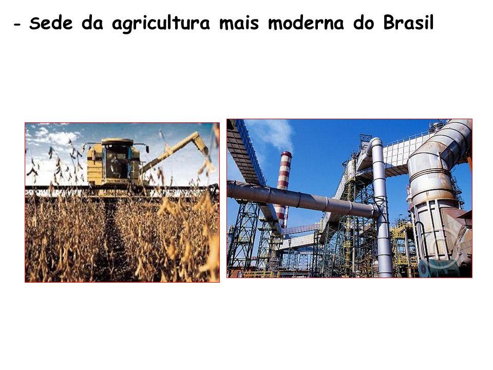 - S ede da agricultura mais moderna do Brasil