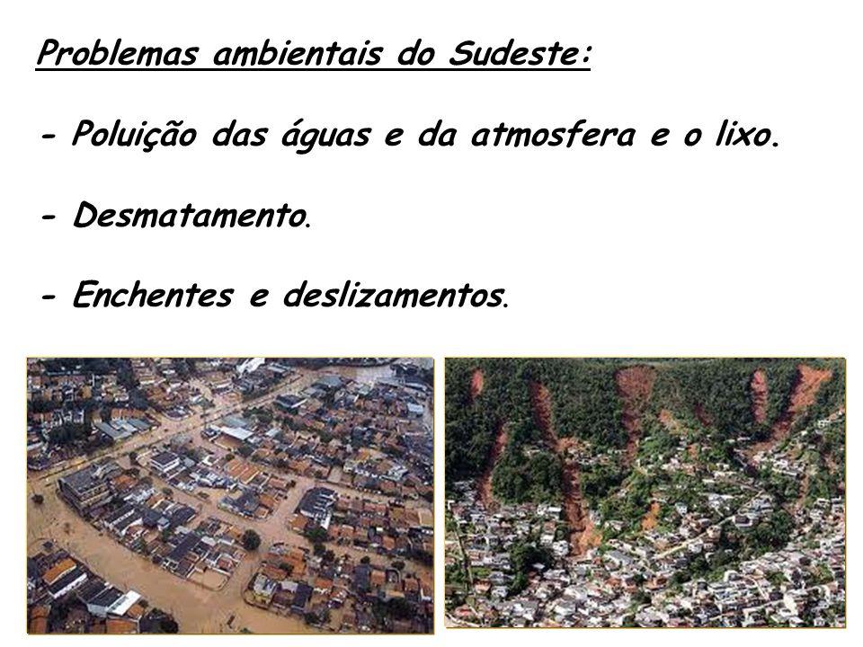 Problemas ambientais do Sudeste: - Poluição das águas e da atmosfera e o lixo. - Desmatamento. - Enchentes e deslizamentos.