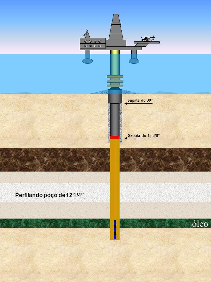 óleo Sapata do 30 Sapata do 13 3/8 Perfilando poço de 12 1/4