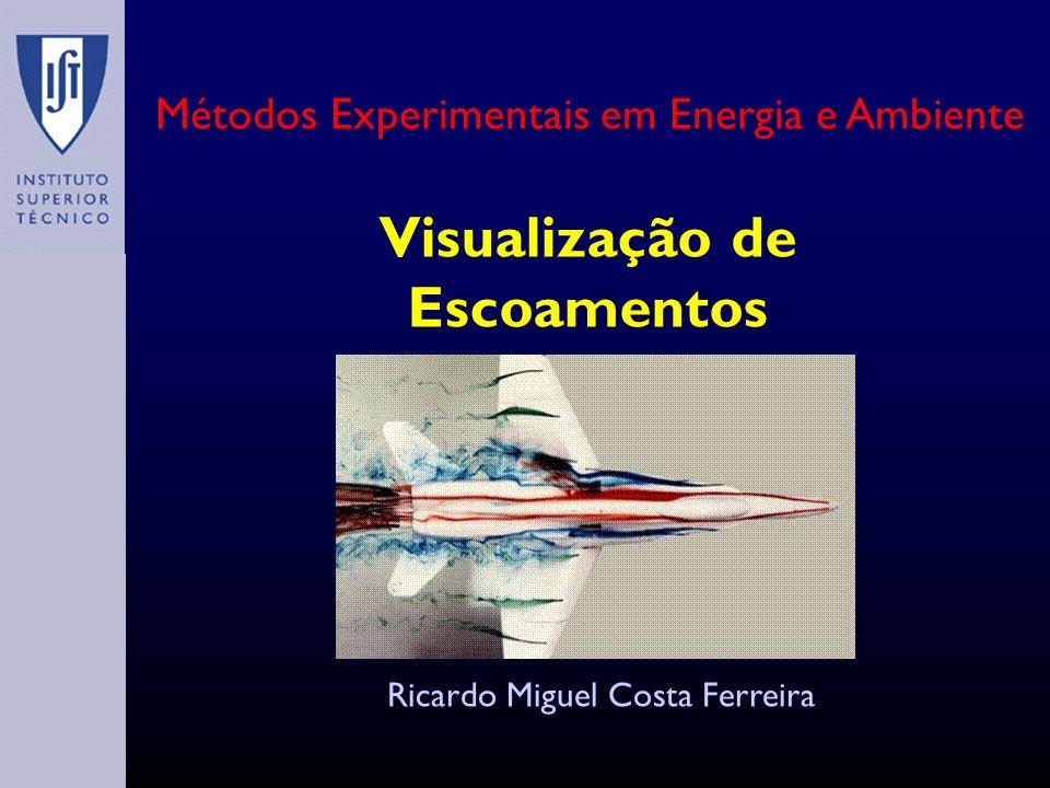 Visualização de Escoamentos Ricardo Miguel Costa Ferreira Métodos Experimentais em Energia e Ambiente