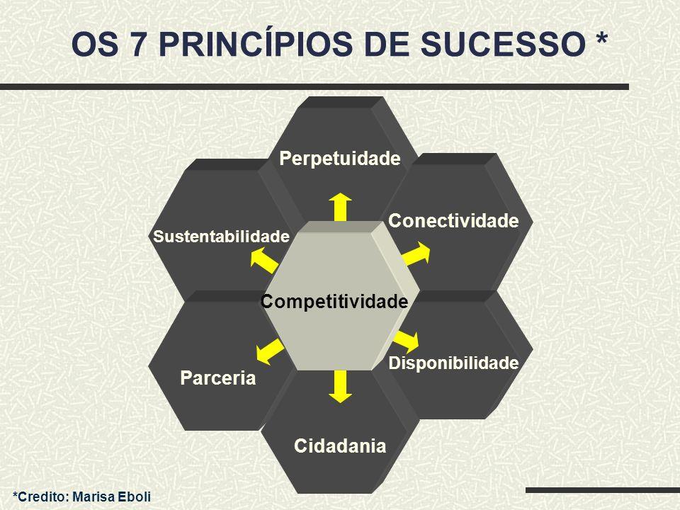 Parceria Perpetuidade Disponibilidade Conectividade Parceria Cidadania Sustentabilidade Competitividade OS 7 PRINCÍPIOS DE SUCESSO * *Credito: Marisa