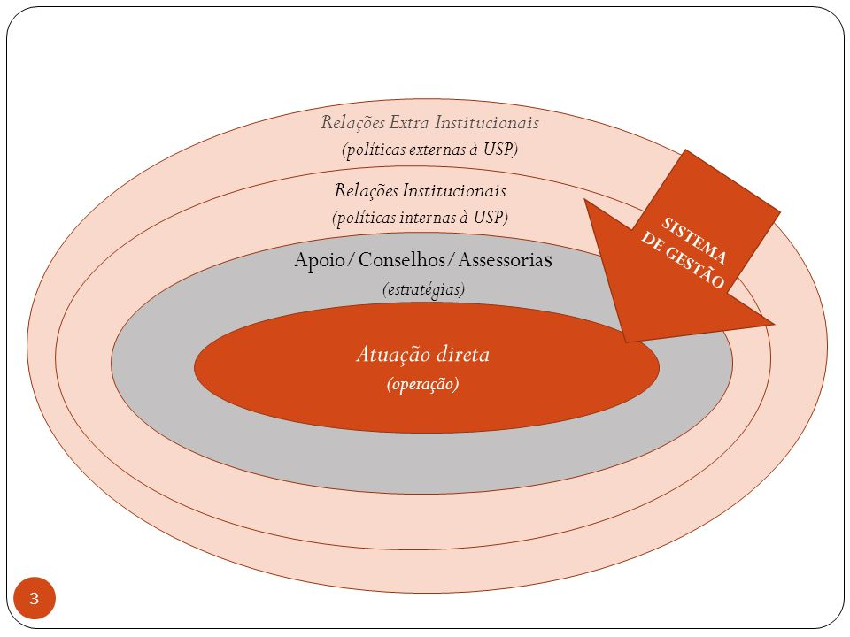 3 Atuação direta (operação) Apoio/Conselhos/Assessoria s (estratégias) Relações Institucionais (políticas internas à USP) Relações Extra Institucionai