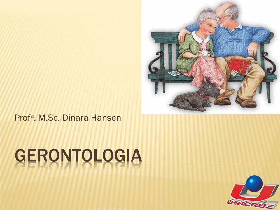 Prof a. M.Sc. Dinara Hansen