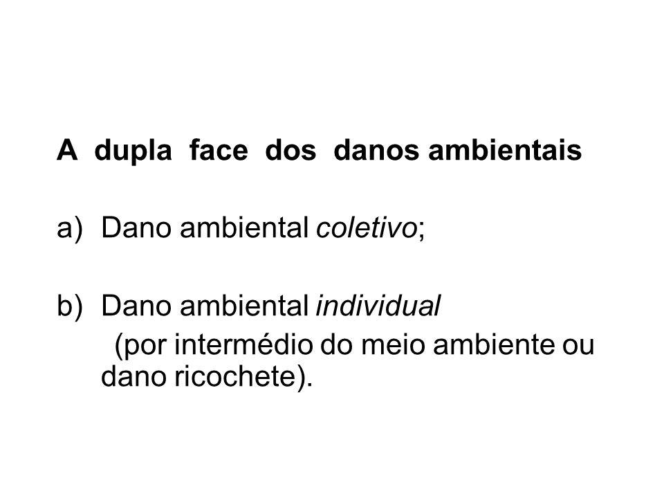 A dupla face dos danos ambientais a)Dano ambiental coletivo; b)Dano ambiental individual (por intermédio do meio ambiente ou dano ricochete).
