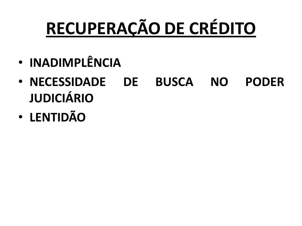 RECUPERAÇÃO DE CRÉDITO INADIMPLÊNCIA NECESSIDADE DE BUSCA NO PODER JUDICIÁRIO LENTIDÃO